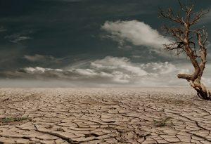 Drought in Makueni